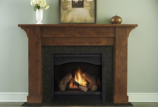 Heat & Glo Gas Logs